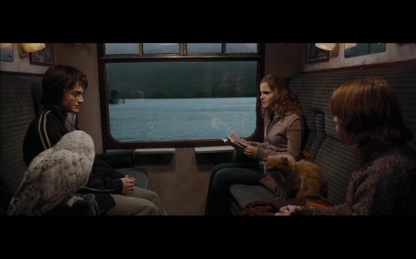 Harry Potter and the Goblet of Fire - 239