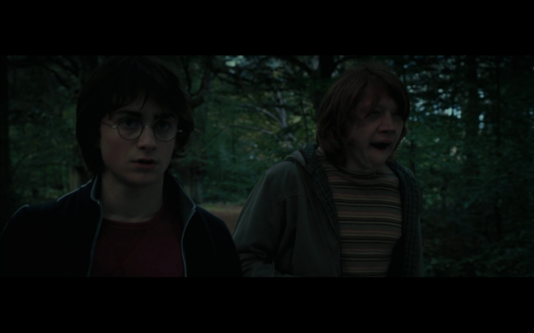 Harry Potter and the Goblet of Fire - 50
