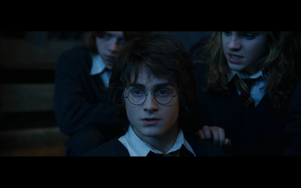 Harry Potter and the Goblet of Fire - 529