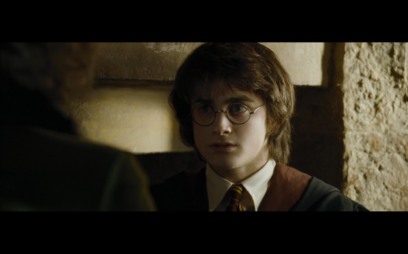 Harry Potter and the Goblet of Fire - 617