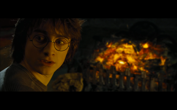 Harry Potter and the Goblet of Fire - 645