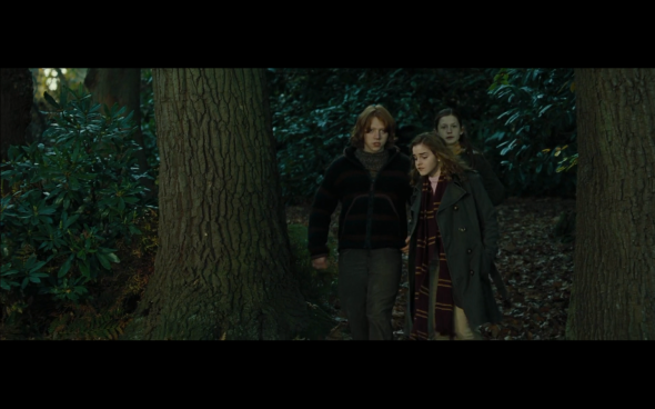 Harry Potter and the Goblet of Fire - 652