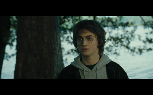 Harry Potter and the Goblet of Fire - 655