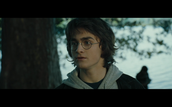 Harry Potter and the Goblet of Fire - 658