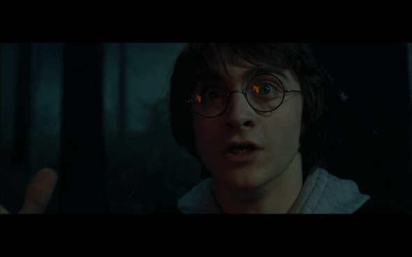 Harry Potter and the Goblet of Fire - 682