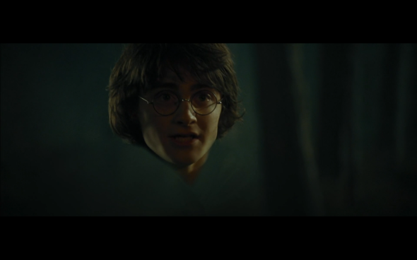 Harry Potter and the Goblet of Fire - 686