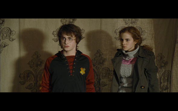 Harry Potter and the Goblet of Fire - 758