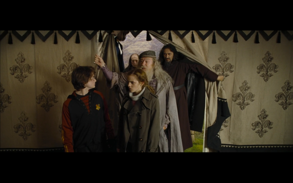 Harry Potter and the Goblet of Fire - 763
