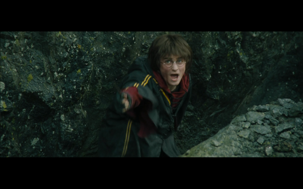 Harry Potter and the Goblet of Fire - 799