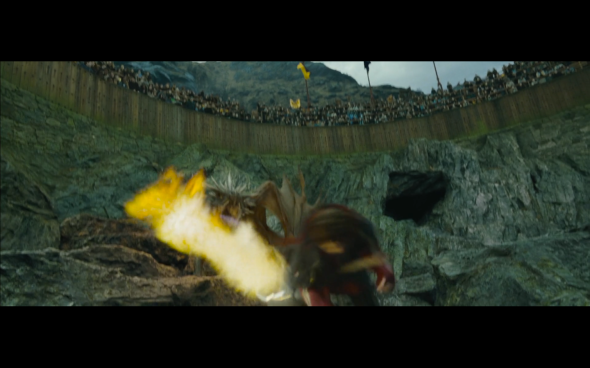 Harry Potter and the Goblet of Fire - 805