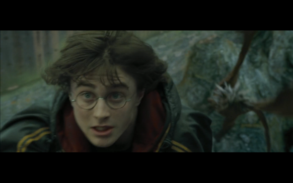 Harry Potter and the Goblet of Fire - 808