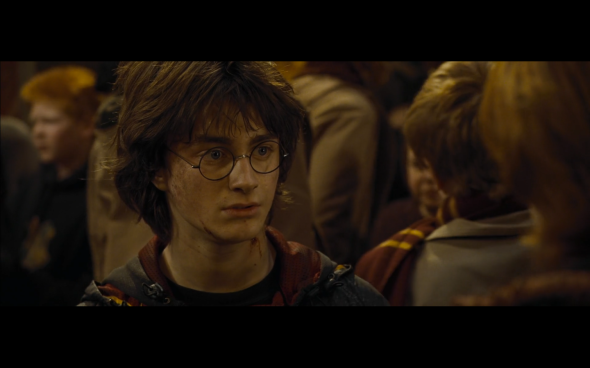 Harry Potter and the Goblet of Fire - 875