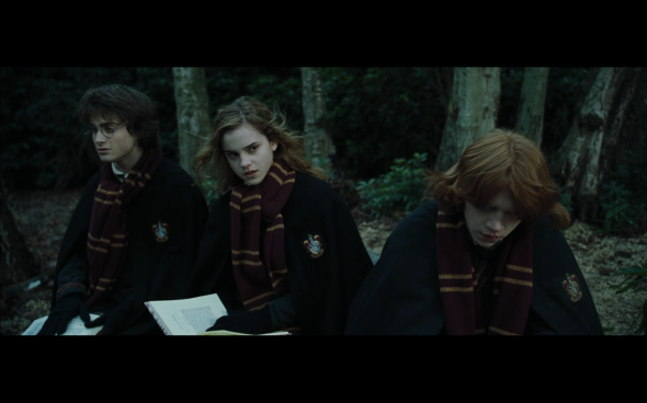 Harry Potter and the Goblet of Fire - 952