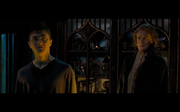 Harry Potter and the Order of the Phoenix - 1006