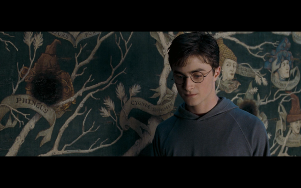 Harry Potter and the Order of the Phoenix - 1078