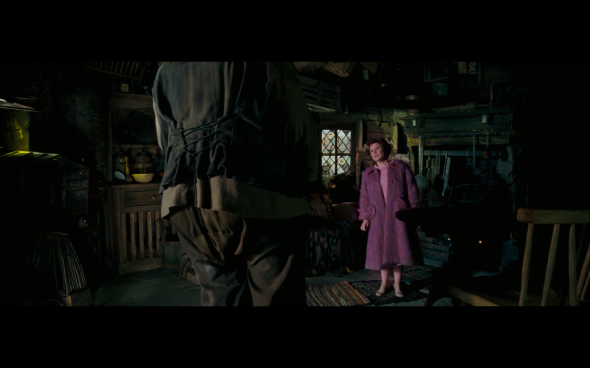 Harry Potter and the Order of the Phoenix - 1110