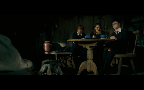 Harry Potter and the Order of the Phoenix - 1112