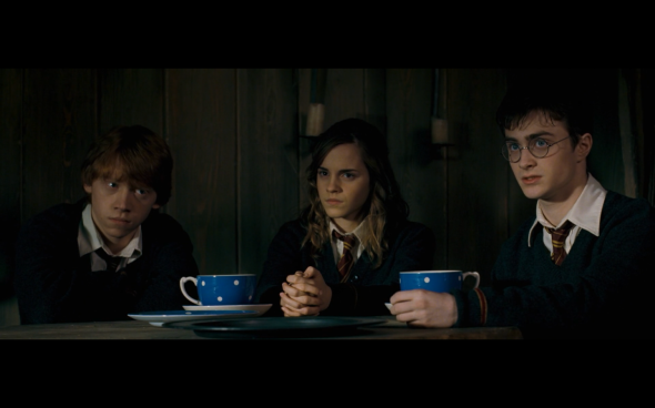 Harry Potter and the Order of the Phoenix - 1114