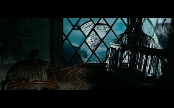 Harry Potter and the Order of the Phoenix - 1116