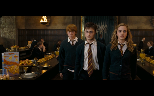 Harry Potter and the Order of the Phoenix - 1141