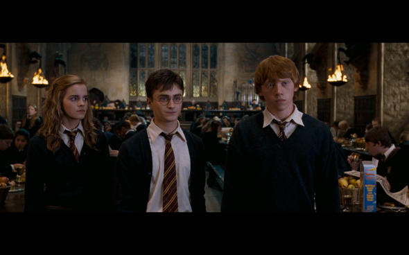 Harry Potter and the Order of the Phoenix - 1143