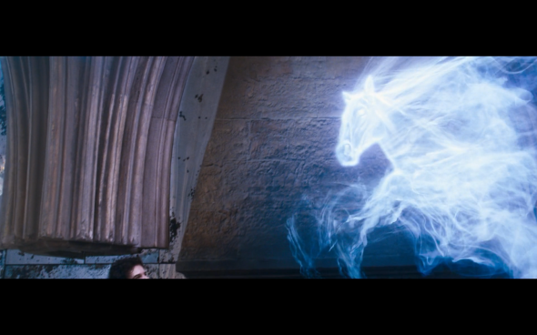 Harry Potter and the Order of the Phoenix - 1151