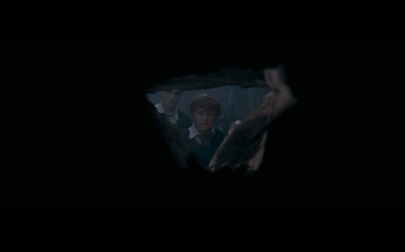 Harry Potter and the Order of the Phoenix - 1164