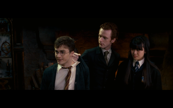 Harry Potter and the Order of the Phoenix - 1176