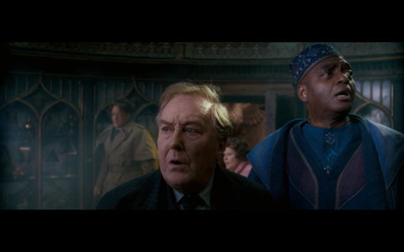 Harry Potter and the Order of the Phoenix - 1193