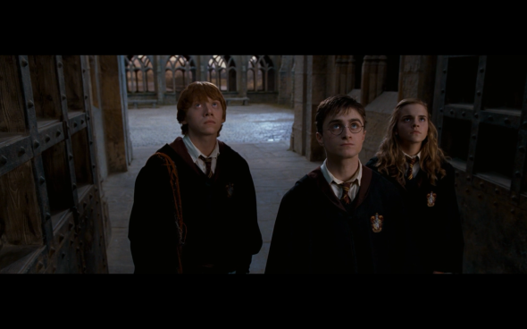 Harry Potter and the Order of the Phoenix - 1196