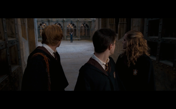 Harry Potter and the Order of the Phoenix - 1201