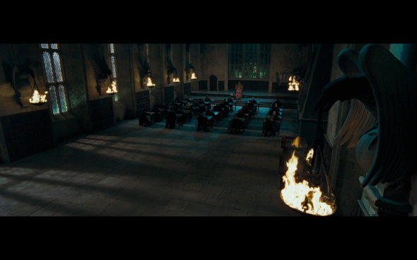 Harry Potter and the Order of the Phoenix - 1211