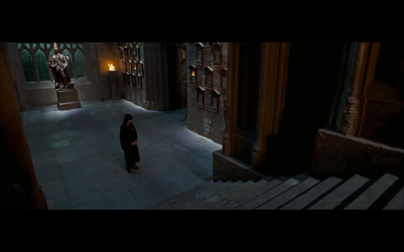 Harry Potter and the Order of the Phoenix - 1215