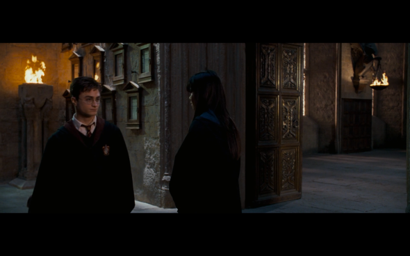 Harry Potter and the Order of the Phoenix - 1217