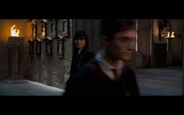 Harry Potter and the Order of the Phoenix - 1218