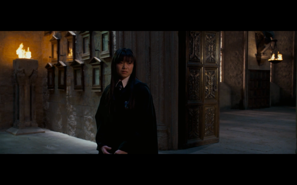 Harry Potter and the Order of the Phoenix - 1219