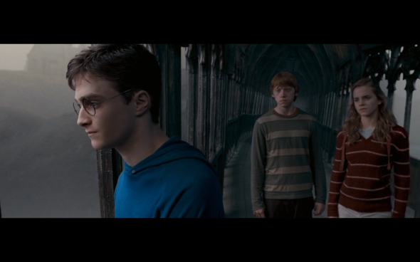 Harry Potter and the Order of the Phoenix - 1221