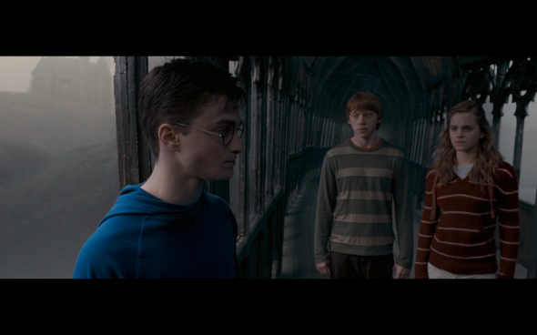 Harry Potter and the Order of the Phoenix - 1222