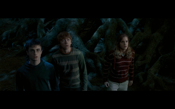 Harry Potter and the Order of the Phoenix - 1228