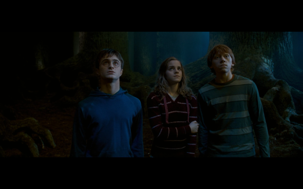 Harry Potter and the Order of the Phoenix - 1242