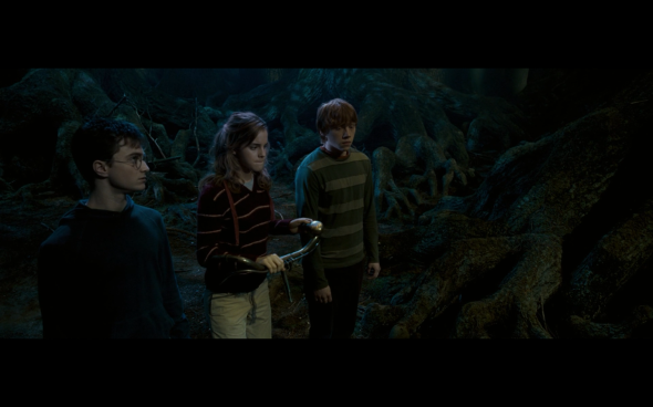 Harry Potter and the Order of the Phoenix - 1246
