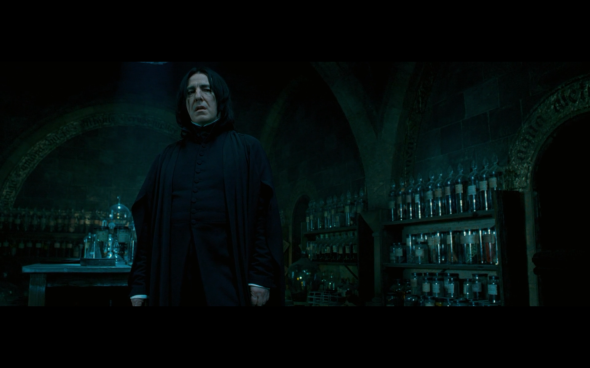 Harry Potter and the Order of the Phoenix - 1253