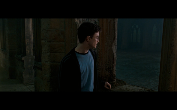 Harry Potter and the Order of the Phoenix - 1283
