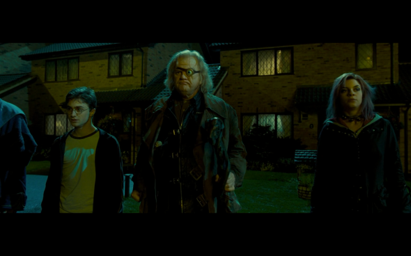 Harry Potter and the Order of the Phoenix - 129