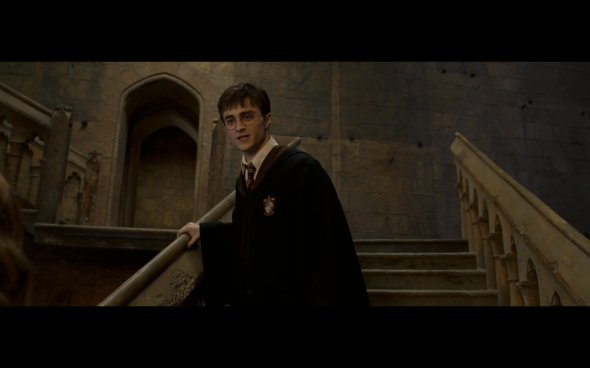 Harry Potter and the Order of the Phoenix - 1347