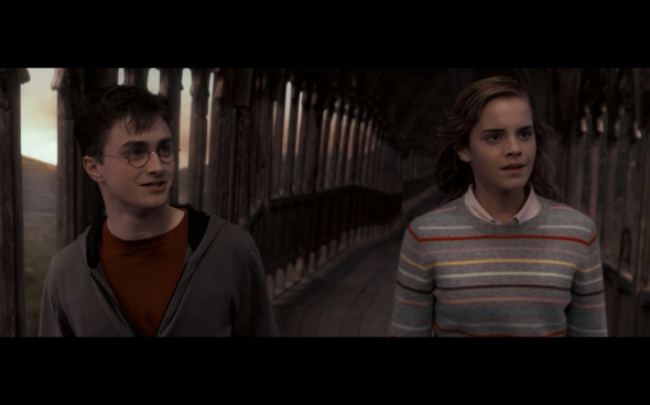 Harry Potter and the Order of the Phoenix - 1402