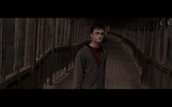 Harry Potter and the Order of the Phoenix - 1406