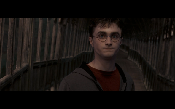 Harry Potter and the Order of the Phoenix - 1408