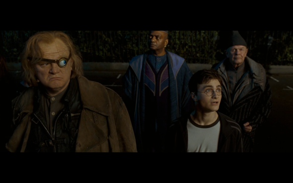 Harry Potter and the Order of the Phoenix - 148