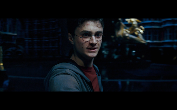 Harry Potter and the Order of the Phoenix - 1660